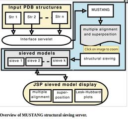 Screenshots of package mustang