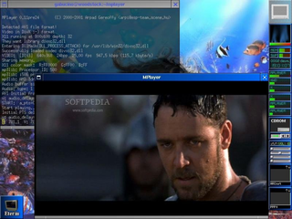 Screenshots of package mplayer