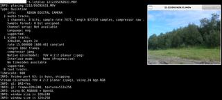Screenshots of package quicktime-x11utils