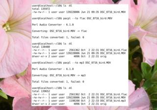 Screenshots of package pacpl