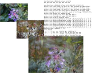 Screenshots of package enfuse
