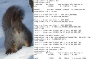Screenshots of package gphotofs