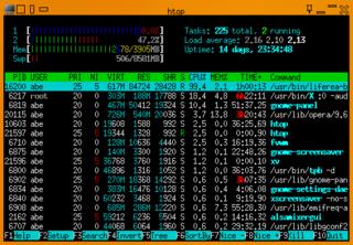 Screenshots of package htop