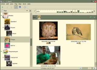 Screenshots of package f-spot