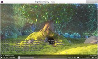 Screenshots of package mpv
